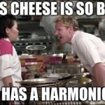 The Blues Cheese | THIS CHEESE IS SO BLUE IT HAS A HARMONICA | image tagged in memes,angry chef gordon ramsay,funny,cheese,music,blue | made w/ Imgflip meme maker