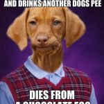 Bad Luck Raydog | EATS A DEAD RABBIT AND DRINKS ANOTHER DOGS PEE DIES FROM A CHOCOLATE EGG | image tagged in bad luck raydog | made w/ Imgflip meme maker