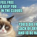 Can't wait for people to correct my science on this one. | FEEL FREE TO KEEP YOU HEAD IN THE CLOUDS YOU'D DIE FROM LACK OF OXYGEN AND ID BE HAPPY | image tagged in memes,grumpy cat sky,grumpy cat,clouds | made w/ Imgflip meme maker