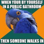 Paranoid Parrot Meme | WHEN YOUR BY YOURSELF IN A PUBLIC BATHROOM THEN SOMEONE WALKS IN | image tagged in memes,paranoid parrot | made w/ Imgflip meme maker