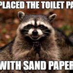 Evil Plotting Raccoon Meme | I REPLACED THE TOILET PAPER WITH SAND PAPER | image tagged in memes,evil plotting raccoon | made w/ Imgflip meme maker