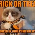 """Grumpy Cat Weekend"" a Socrates and Craziness_all_the_way event is knocking on your door 