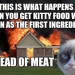 Grumpy Cat Weekend Oct 5th-8th (A Socrates and Craziness_all_the_way event | THIS IS WHAT HAPPENS WHEN YOU GET KITTY FOOD WITH CORN AS THE FIRST INGREDIENT INSTEAD OF MEAT | image tagged in memes,burn kitty,grumpy cat,funny,grumpy cat weekend | made w/ Imgflip meme maker