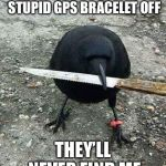 hood bird | IF I CAN GET THIS STUPID GPS BRACELET OFF THEY'LL NEVER FIND ME | image tagged in hood bird | made w/ Imgflip meme maker