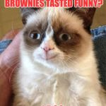 Grumpy Cat Weekend by Craziness_all_the_way and socrates!  | REMEMBER WHEN THOSE BROWNIES TASTED FUNNY? I DOO | image tagged in memes,grumpy cat happy,grumpy cat,socrates,craziness_all_the_way | made w/ Imgflip meme maker