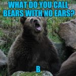 Duh | WHAT DO YOU CALL BEARS WITH NO EARS? B | image tagged in sarcastic bear | made w/ Imgflip meme maker