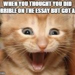 Excited Cat Meme | WHEN YOU THOUGHT YOU DID HORRIBLE ON THE ESSAY BUT GOT AN A | image tagged in memes,excited cat | made w/ Imgflip meme maker