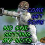 Bazooka Squirrel Meme | COME GET SOME NO ONE GETTING MY NUTS | image tagged in memes,bazooka squirrel,nuts,funny | made w/ Imgflip meme maker