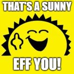 Ray of Sunshine | THAT'S A SUNNY EFF YOU! | image tagged in ray of sunshine | made w/ Imgflip meme maker
