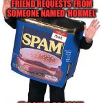 You don't know who to trust anymore  | DO NOT ACCEPT FRIEND REQUESTS FROM SOMEONE NAMED 'HORMEL' IT COULD BE SPAM | image tagged in spam,facebook,friend request | made w/ Imgflip meme maker
