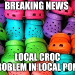 crocs | BREAKING NEWS LOCAL CROC PROBLEM IN LOCAL POND | image tagged in crocs | made w/ Imgflip meme maker
