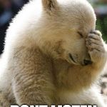 Facepalm Bear Meme | WHEN THEY DONT LISTEN | image tagged in memes,facepalm bear | made w/ Imgflip meme maker