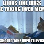 we've already taken over youtube | LOOKS LIKE DOGS ARE TAKING OVER MEMES WE SHOULD TAKE OVER TELEVISION! | image tagged in memes,i should buy a boat cat | made w/ Imgflip meme maker