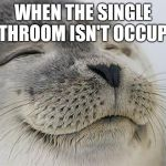 Satisfied Seal Meme | WHEN THE SINGLE BATHROOM ISN'T OCCUPIED | image tagged in memes,satisfied seal,AdviceAnimals | made w/ Imgflip meme maker