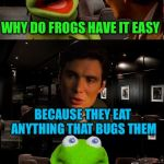 Kermit Triggered | WHY DO FROGS HAVE IT EASY BECAUSE THEY EAT ANYTHING THAT BUGS THEM | image tagged in kermit triggered | made w/ Imgflip meme maker