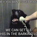 Yes this is dog | SIR IF YOU WANT TO GET ROUGH WE CAN SETTLE THIS IN THE BARKING LOT | image tagged in yes this is dog | made w/ Imgflip meme maker