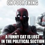 Deadpool Surprised Meme | OH POOR THING A FUNNY CAT IS LOST IN THE POLITICAL SECTION | image tagged in memes,deadpool surprised | made w/ Imgflip meme maker