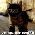 cute and dangerous | WHO'S CUTE AND FURRY NOW SUCKARS! | image tagged in ninja cat | made w/ Imgflip meme maker
