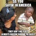 skeptical black boy | SO, YOU SAYIN' IN AMERICA THEY AIN'T NO FLIES ALWAYS BUZZIN' ROUND YO FACE? | image tagged in skeptical black boy | made w/ Imgflip meme maker