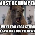 Hump Day Camel | IT MUST BE HUMP DAY... I WENT TO A YOGA STUDIO AND SAW MY TOES EVERYWHERE | image tagged in hump day camel | made w/ Imgflip meme maker