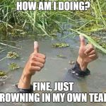 Drowning Thumbs Up | HOW AM I DOING? FINE, JUST DROWNING IN MY OWN TEARS | image tagged in drowning thumbs up | made w/ Imgflip meme maker