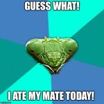 Crazy Girlfriend Praying Mantis Meme | GUESS WHAT! I ATE MY MATE TODAY! | image tagged in memes,crazy girlfriend praying mantis | made w/ Imgflip meme maker
