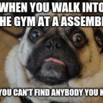 Pug worried | WHEN YOU WALK INTO THE GYM AT A ASSEMBLY AND YOU CAN'T FIND ANYBODY YOU KNOW | image tagged in pug worried | made w/ Imgflip meme maker
