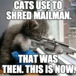 cats with guns | CATS USE TO SHRED MAILMAN. THAT WAS THEN. THIS IS NOW. | image tagged in cats with guns | made w/ Imgflip meme maker