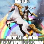 Welcome To The Internets Meme | IMGFLIP: WHERE BEING WEIRD AND AWKWARD IS NORMAL | image tagged in memes,welcome to the internets | made w/ Imgflip meme maker