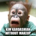 Shocked Monkey | KIM KARDASHIAN WITHOUT MAKEUP | image tagged in shocked monkey | made w/ Imgflip meme maker