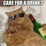 Funny Cat Birthday | CARE FOR A DRINK? | image tagged in funny cat birthday | made w/ Imgflip meme maker