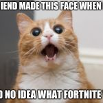 (Now I do(I guess...(not sure))) | MY FRIEND MADE THIS FACE WHEN I SAID I HAD NO IDEA WHAT FORTNITE WAS | image tagged in amazed cat | made w/ Imgflip meme maker
