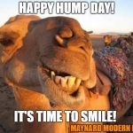 Camel smile | HAPPY HUMP DAY! IT'S TIME TO SMILE! MAYNARD MODERN MEDIA | image tagged in camel smile | made w/ Imgflip meme maker