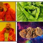 https://www.cdc.gov/ecoli/2018/o157h7-11-18/index.html | image tagged in drakeposting,space weed | made w/ Imgflip meme maker