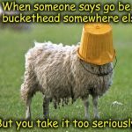 stupid sheep | When someone says go be a buckethead somewhere else But you take it too seriously | image tagged in stupid sheep | made w/ Imgflip meme maker