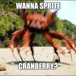 Crab Rave | WANNA SPRITE CRANBERRY? | image tagged in crab rave | made w/ Imgflip meme maker