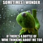 sometimes I wonder  | SOMETIMES I WONDER IF THERE'S A BOTTLE OF WINE THINKING ABOUT ME TOO | image tagged in sometimes i wonder | made w/ Imgflip meme maker