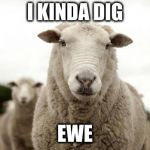 Sheep | I KINDA DIG EWE | image tagged in sheep | made w/ Imgflip meme maker