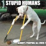 Dog poop | STUPID HUMANS ALWAYS POOPING ALL OVER THE PLACE | image tagged in dog poop | made w/ Imgflip meme maker