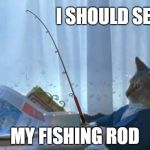 Teach a cat to fish and he'll still want you to feed him... | I SHOULD SELL MY FISHING ROD | image tagged in memes,i should buy a boat cat,fishing | made w/ Imgflip meme maker