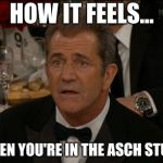 Confused Mel Gibson Meme | HOW IT FEELS... WHEN YOU'RE IN THE ASCH STUDY | image tagged in memes,confused mel gibson | made w/ Imgflip meme maker