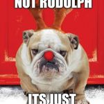 Christmas Hound | THAT'S NOT RUDOLPH ITS JUST A RUDE-DOG | image tagged in christmas hound | made w/ Imgflip meme maker