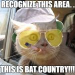 Fear And Loathing Cat Meme | I RECOGNIZE THIS AREA. . . THIS IS BAT COUNTRY!!! | image tagged in memes,fear and loathing cat | made w/ Imgflip meme maker