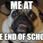 Pug worried | ME AT THE END OF SCHOOL | image tagged in pug worried | made w/ Imgflip meme maker
