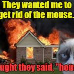 "Burn Kitty Meme | They wanted me to get rid of the mouse... I thought they said, ""house""... 