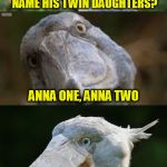 Ba-dum-pish | WHAT DID THE DRUMMER NAME HIS TWIN DAUGHTERS? ANNA ONE, ANNA TWO | image tagged in bad joke bird 3,memes,bad jokes | made w/ Imgflip meme maker