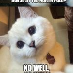 bad pun cat  | WHY COULDN'T SANTA FIND ANYONE INTERESTED IN BUYING HIS HOUSE AT THE NORTH POLE? NO WELL, NO WELL! | image tagged in bad pun cat,santa claus | made w/ Imgflip meme maker
