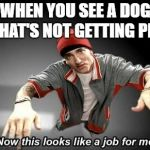 Now this looks like a job for me | WHEN YOU SEE A DOG THAT'S NOT GETTING PET | image tagged in now this looks like a job for me | made w/ Imgflip meme maker