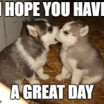 Cute Puppies Meme | I HOPE YOU HAVE A GREAT DAY | image tagged in memes,cute puppies | made w/ Imgflip meme maker
