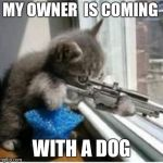 cats with guns | MY OWNER  IS COMING WITH A DOG | image tagged in cats with guns | made w/ Imgflip meme maker